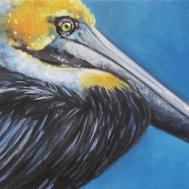 Bird-UncleSalty-Pelican-8x16-oil-McNinch